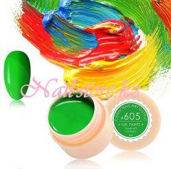 №605 Гель-краска CANNI 5 мл (зеленая)