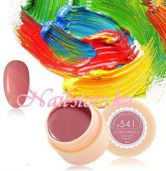 №541 Гель-краска CANNI 5 мл (темная розово-бежевая)