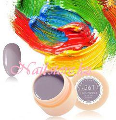 №561 Гель-краска CANNI 5 мл (серый асфальт)