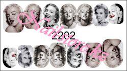 2202 Слайдер-дизайн PFN
