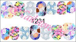 1231 Слайдер-дизайн PFN