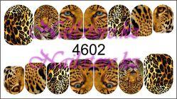 4602 Слайдер-дизайн PFN