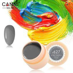 №627 Гель-краска CANNI 5 мл (серо-зеленая)